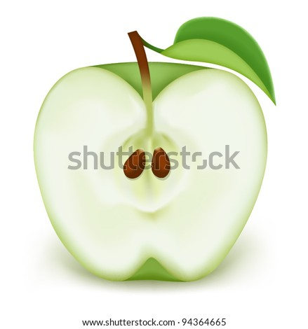 Half a green apple on a white background - stock vector
