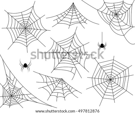 Realistic Spider Web Drawings More Information