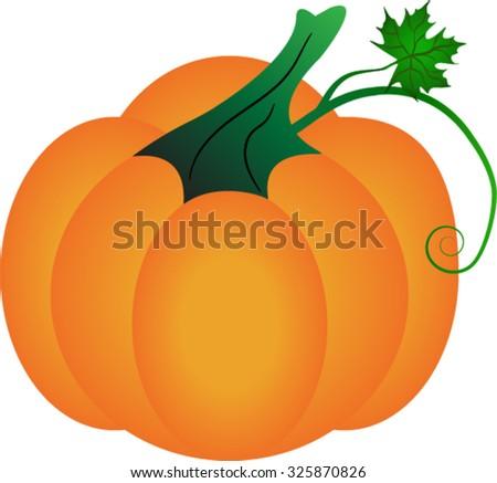 Halloween pumpkin vector illustration on white background. - stock vector