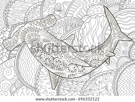 Hammerhead High Details Adult Antistress Coloring Stock