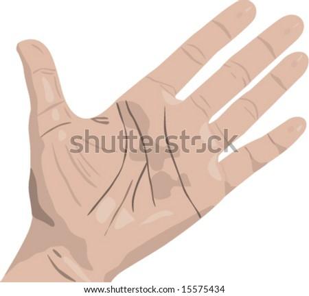 hand - stock vector