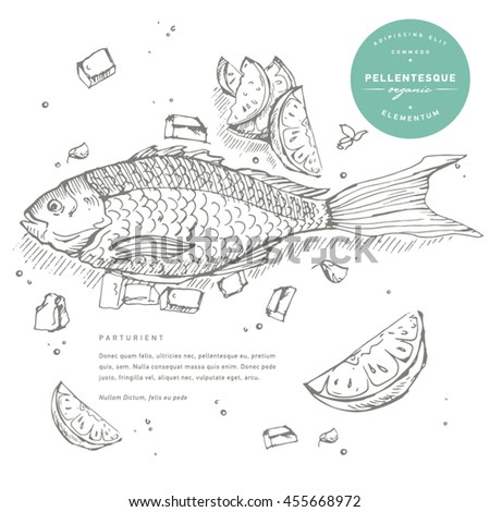 hand draw illustration seafood or underwater world fish sketches fish restaurant menu - Underwater World Restaurant