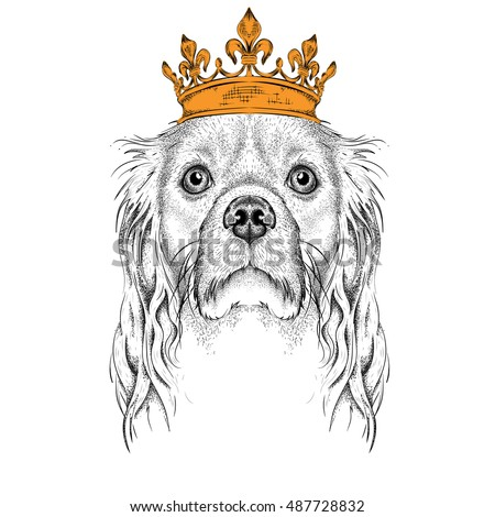 hand draw image portrait of cocker in the crown use for print posters