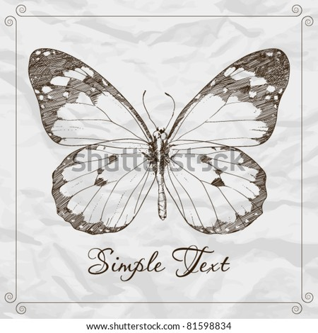 Hand-draw of monarch butterfly on a paper backround. Vector illustration. Place for your text - stock vector