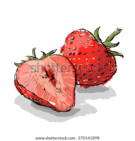 hand draw strawberry vector illustration stock vector royalty free