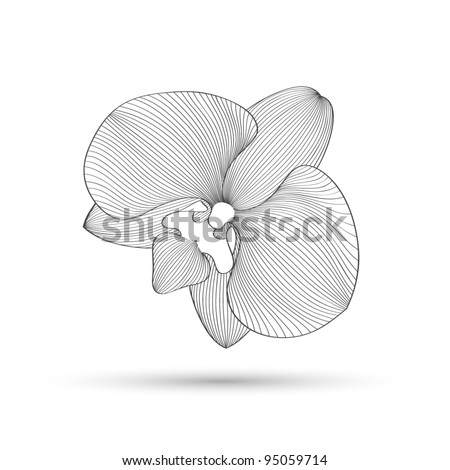 Hand-drawing abstract floral background. Vector flower orchid. Element for design. - stock vector