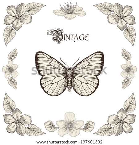 Hand drawing butterfly flowers and leaves. Decorative floral frame. Vintage engraving style - stock vector