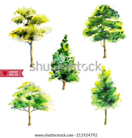 hand drawing by water color a vector set of trees - stock vector