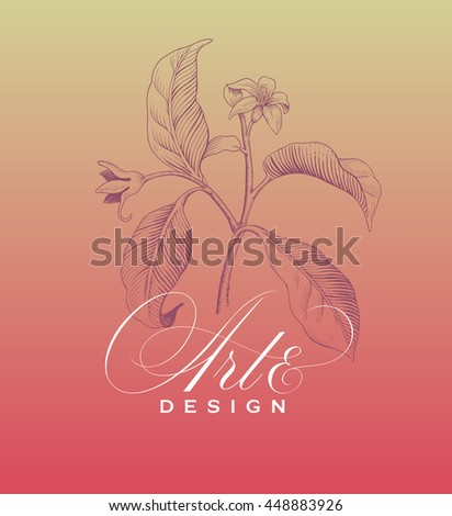Hand drawing flower background with calligraphic lettering. Ink in the style of antique engraving. Vector illustration.  - stock vector