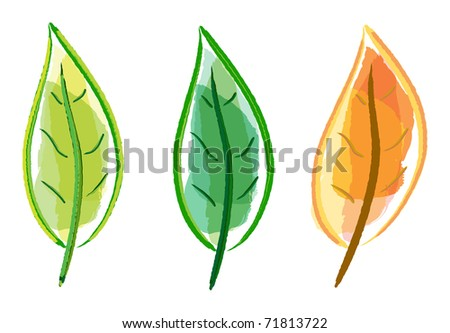 Hand drawing leaf set on white background - stock vector