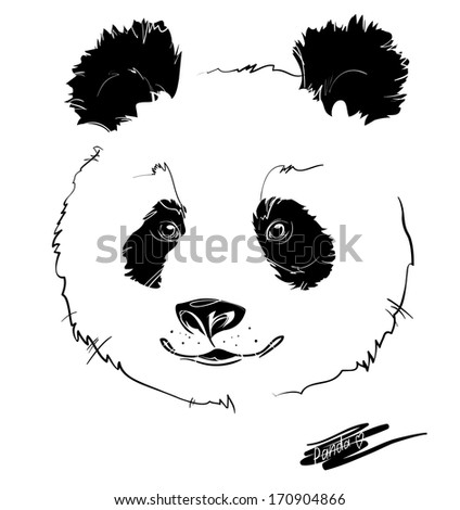 hand-drawing panda head, white background - stock vector