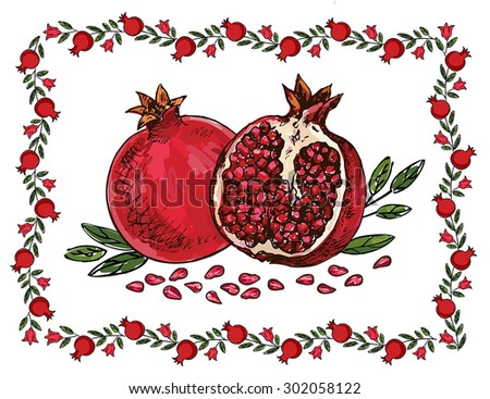 hand drawing pomegranates with frame - stock vector