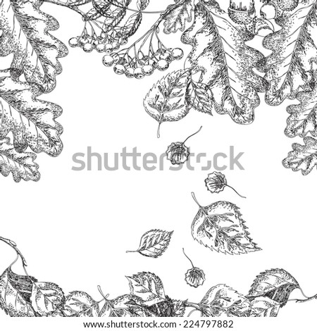 Hand drawing with autumn leaves - stock vector