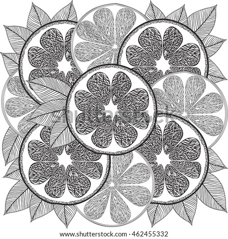 Hand Drawn Adult Coloring Page Citrus Fruit In Doodletribal Style For Book