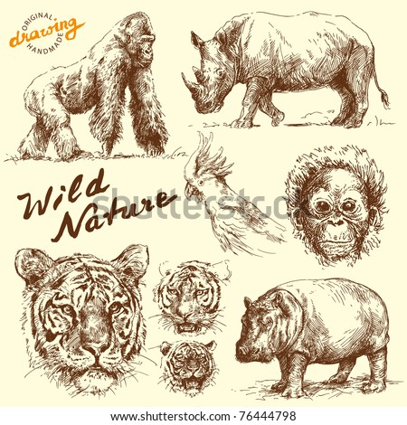 hand drawn animals collection - stock vector
