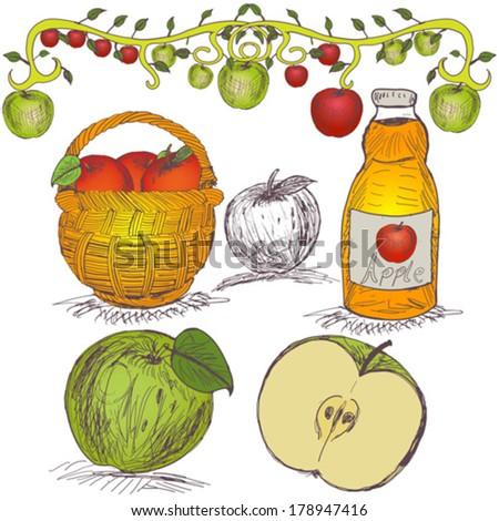 hand drawn apple set - stock vector