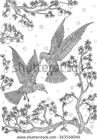 Hand drawn bird - Birds on a branch apple-tree. Coloring page.