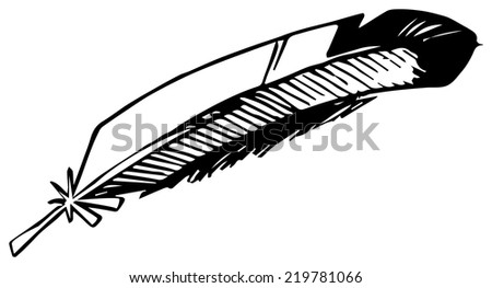Hand drawn bird feather, vector illustration - stock vector