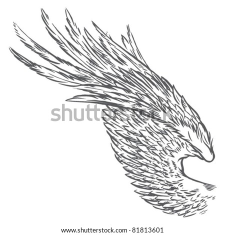 Hand Drawn Bird Wing - stock vector