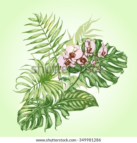 Hand drawn branches and leaves of tropical plants. Bouquet with pink  Orchid flower. - stock vector