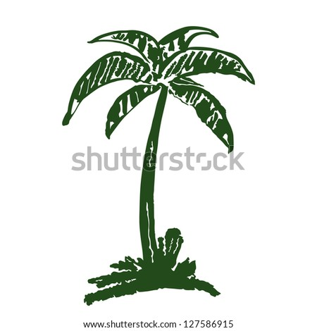 hand drawn coconut tree