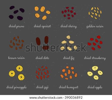 Hand drawn colored detailed sun dried fruits. Healthy nutritive food. Raisin, cherry, strawberry, goji, apricot, prune, apple, pineapple, date, fig, kumquat. - stock vector