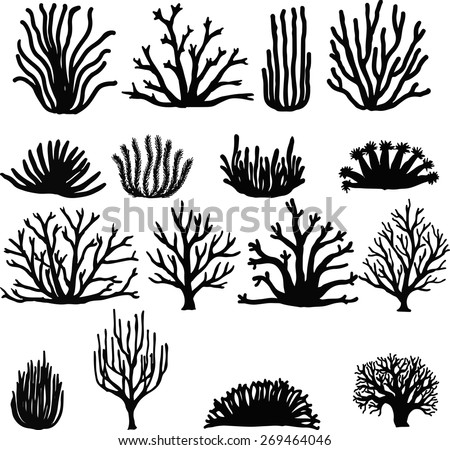 Hand drawn corals isolated on white. Silhouette icons. - stock vector