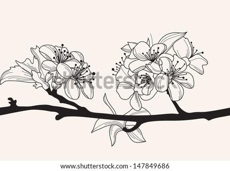 hand drawn decorative cherry blossom, design element - stock vector