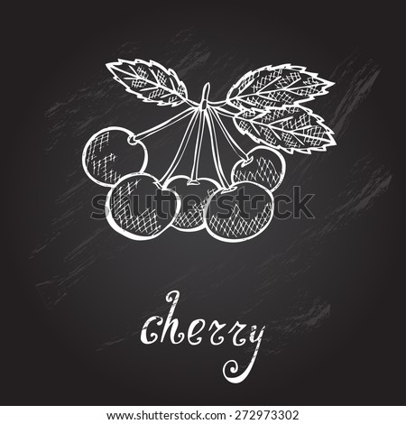 Hand drawn decorative cherry fruits, design elements. Can be used for cards, invitations, gift wrap, print, scrapbooking. Kitchen theme. Chalkboard background. Sketch - stock vector