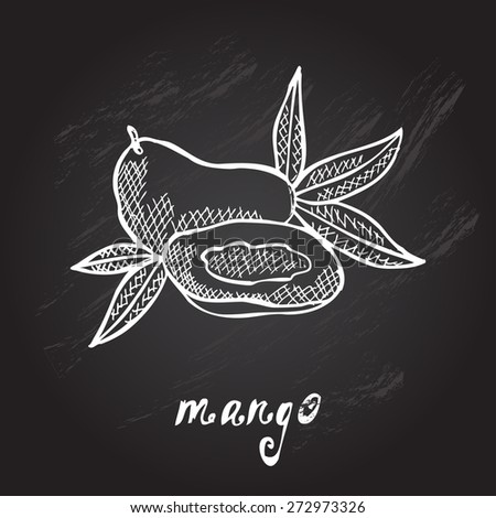 Hand drawn decorative mango fruits, design elements. Citrus collection. Can be used for cards, invitations, gift wrap, print, scrapbooking. Kitchen theme. Chalkboard background. Sketch - stock vector