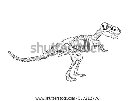 Hand Drawn Dinosaur Skeleton - stock vector
