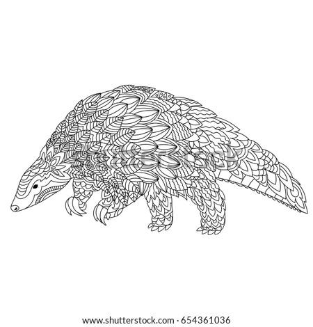 pangolin coloring page - pangolin stock images royalty free images vectors