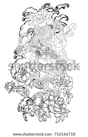 Hand Drawn Dragon Tattoo Coloring Book Stock Vector 716166718 ...