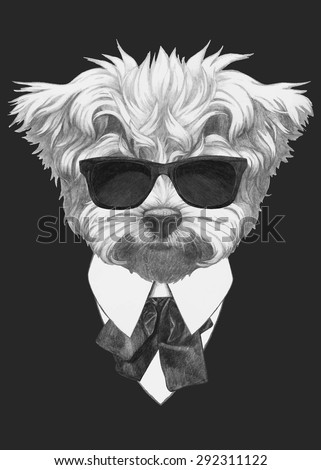 Hand drawn fashion Illustration of Maltese Poodle. Vector isolated elements. - stock vector