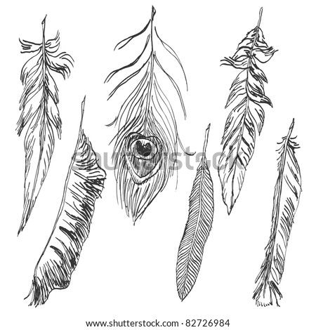 Hand-drawn feather collection - stock vector