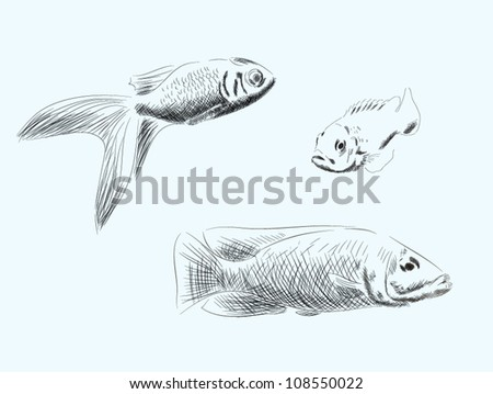 Hand drawn fish vector set