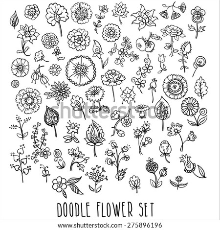hand drawn floral elements, doodle, vector illustration - stock vector