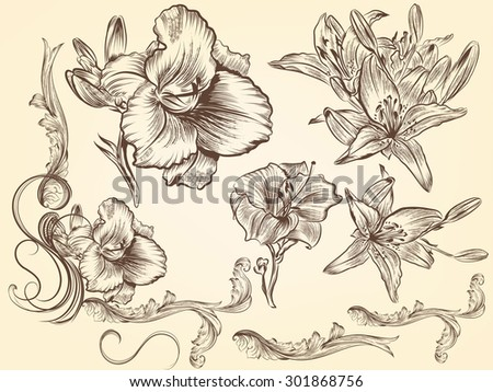 Hand drawn flowers set vintage style - stock vector