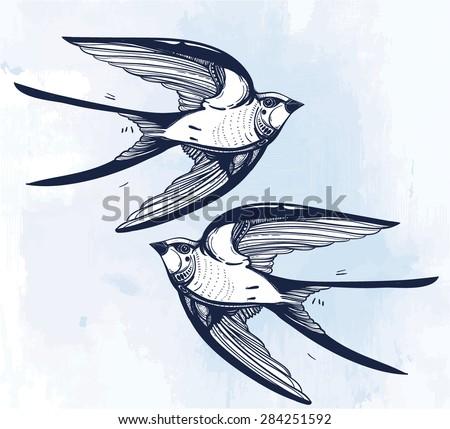 Barn Swallow Stock Vectors Amp Vector Clip Art