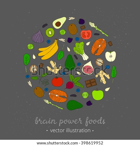 Hand drawn foods for brain power in circle shape. Blackberry, brussels sprouts, artichoke, banana, salmon, ginger, tomato, kiwi, pumpkin seed, apple, blueberry, beet, green tea, bok choy. - stock vector