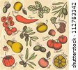 Hand drawn fruit and vegetables set - stock photo