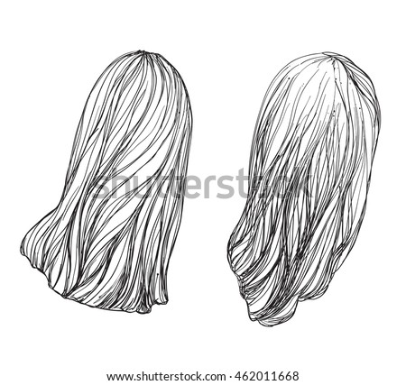 hand drawn hair services hair care stock vector royalty free