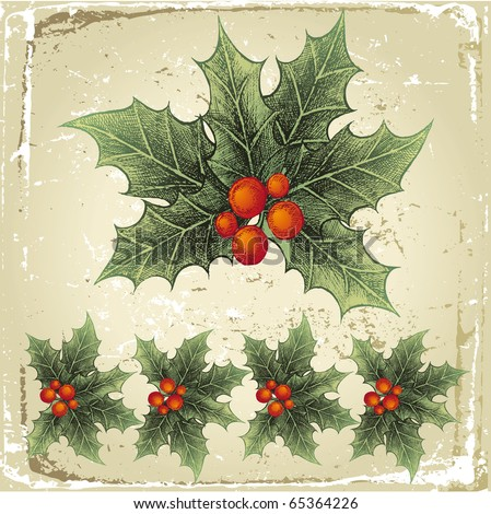 hand drawn holly berry - stock vector