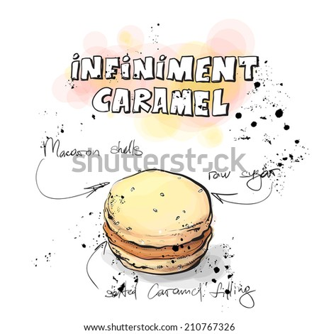 Hand drawn illustration of french MACARON. Vector collection. - stock vector