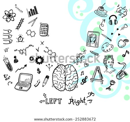 Hand drawn illustration of left and right brain function. - stock vector