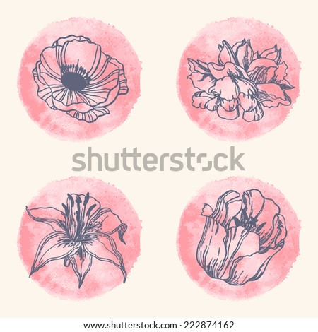 Hand drawn ink flowers on watercolor background. Anemone, tulip, rose, lily. - stock vector