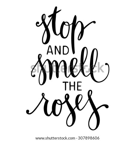 "Hand drawn inspirational quote ""Stop and Smell the Roses"". Brush painted letters, vector illustration. - stock vector"
