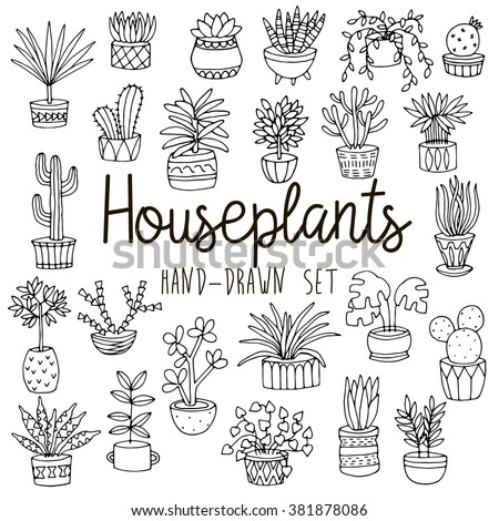 house plants drawing. hand drawn line set of houseplants in pots house plants drawing h