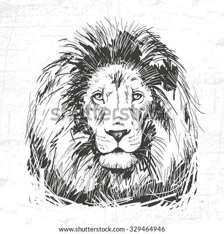 hand drawn lion head. See also other animals - stock vector