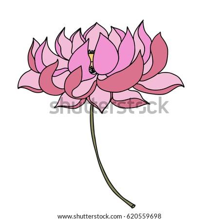 Hand drawn lotus flower tattoo design stock vector 620559698 hand drawn lotus flower for tattoo design mightylinksfo